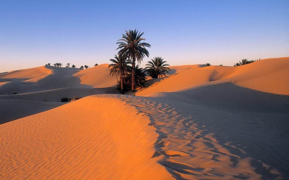 в пустыне Туниса